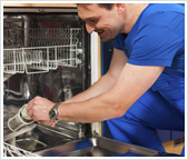 Remove and Clean Dishwasher Filters