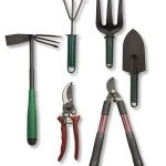 What Are The Tools Every Gardener Should Own