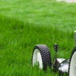Don't Let Your Lawnmower Ruin Spring
