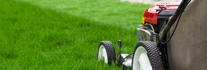 Close Up Of Lawnmower Mowing Grass