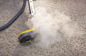 How to Tell If Your Steam Cleaner Has a Fault
