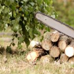 Save Money and Sharpen Your Chainsaw Chain