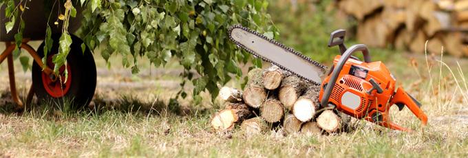 Sharpen Your Chainsaw Chain