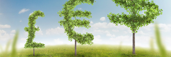 Money Saving Tree