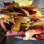 10 Autumn Cleaning Tips For Your Home