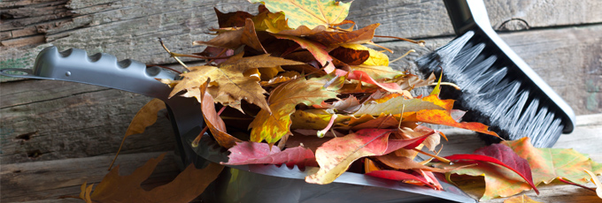 10 Tips for Autumn Cleaning