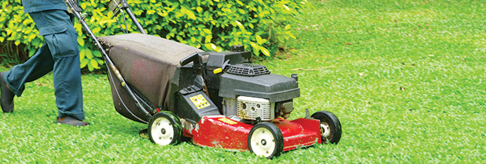 Lawn Mower On Lawn