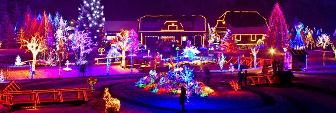 Christmas Lights On House And Surrounding Trees
