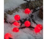 Red Berry Lights On Snow