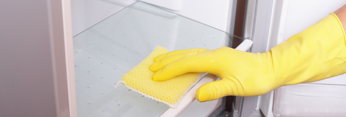 Hands Cleaning An Appliance