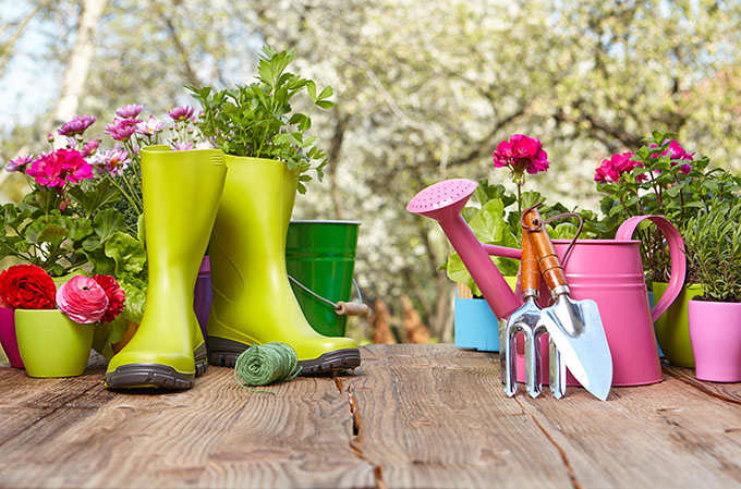 Outdoor Gardening Tools On Wooden Table