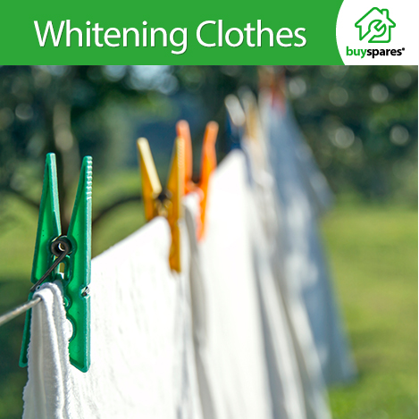 Clothes Pegged To Washing Line