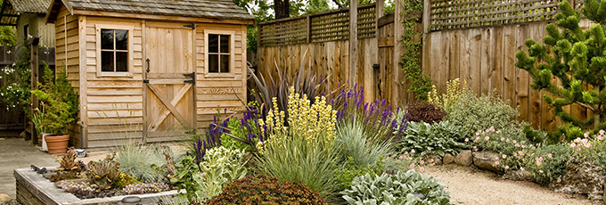 Landscaped Yard With Shed