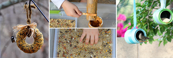 DIY Bird Feeder Recipes