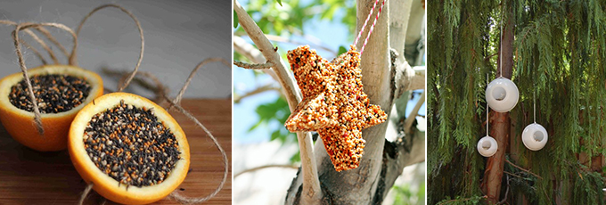 Bird Feeder DIY Collage