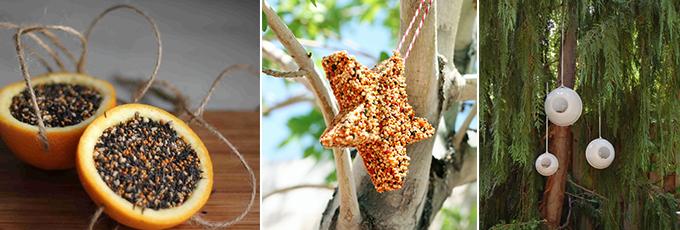 Bird Feeder DIY Collage