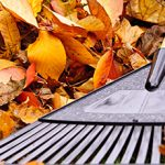 How To Prepare Your Garden For Autumn