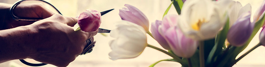 Preparing fresh flowers