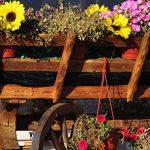 5 creative upcycling garden planters