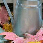 Gardening tasks to do for autumn