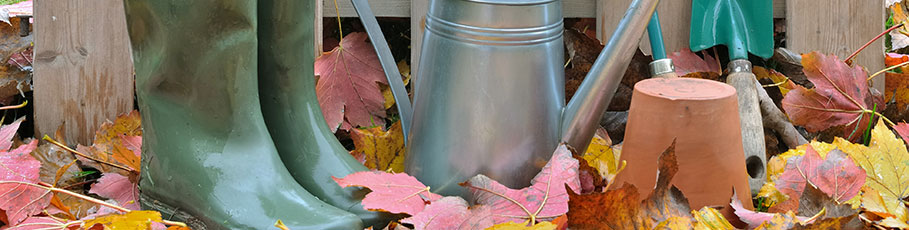 Autumn gardening tools and equipment