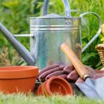10 Top Gardening Tasks to Do This Bank Holiday Weekend